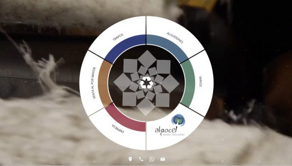 Design website customized for: Algocel. Textiles Renovables - neitmedia